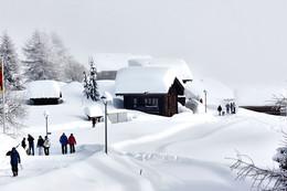 """""""Подснежники"""" / Высота 2000 метров. Деревушку в этом году засыпало небывалым слоем снега - местные такого снега не припоминают. По данным синоптиков в данной местности выпало 3-4 метра снега. В прошлом году снега практически не было - на всех горнолыжных трассах был искусственный снег."""