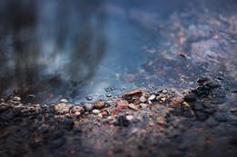 Мгновение из жизни весенней лужи минского разлива / Весенняя лужа минского разлива, снятая при непосредственном художественном участии объектива Гелиос 44-3