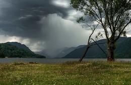 Летний дождь. / Алтай. Телецкое озеро.