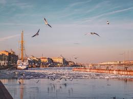 Хаос весеннего ледохода / Петербург, апрель 2018