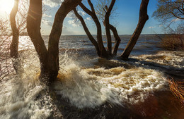 когда море выходит из берегов / ***