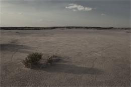 Без названия / пустыня