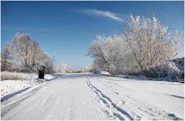 Зимняя ... / Был прекрасный зимний день ...