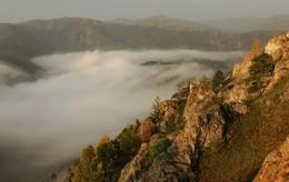 Стелется туман. / Утро. Торгашинский хребет.