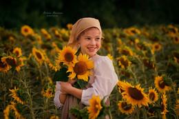 Брызги солнечного света я держу в своих руках / подсолнухи