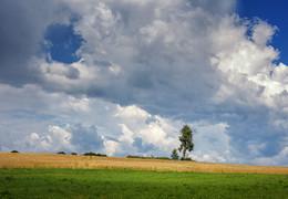 Полдень, облачка / ***