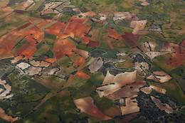 Поля / Поля и сады Испании на восходе Солнца