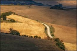 Светлая дорога / Тосканский пейзаж.