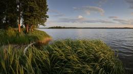 """Вечерняя тишина / Беларусь. Озеро """"Малые Швакшты""""."""