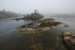 Киты и черепахи ладожских шхер... / Ладожское озеро. В сл.году приглашаю в фототуры в эти места. Подробности на сайте http://phototourtravel.ru/