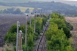 конец лета / Скоро конец лета. Аисты ждут, когда поезд отправится в Африку.