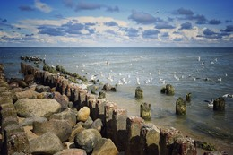 Без названия / Балтийское море