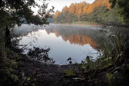 Рассвет на озере...2. / ***