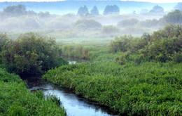 утром туманным / в поле над рекой