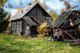 Дом, в котором живет... / Осень в деревне