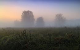 Силуэты / Пейзаж Беларуси