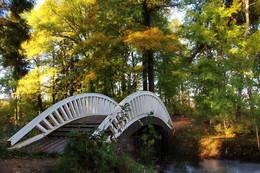 китайский мостик / Один из самых красивых природных парков ... китайский мостик...  #Монрепо #Выборг #Vyborg