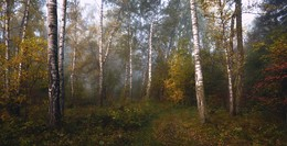 Осень. / ***