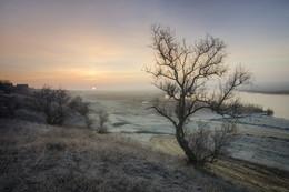 Морозным утром / ***