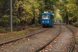 Трамвай идущий в осень / 27-й маршрут трамвая — популярный и богатый историей маршрут трамвая города Москвы. Запущен в 1912-м году. Остановка парк Дубки