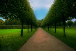 В осеннем парке / ***
