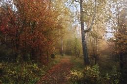 Осенняя тропинка. / ***