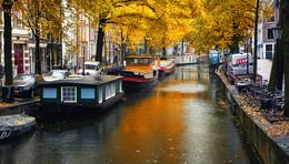 Позолоченный сезон / Осенний Амстердам