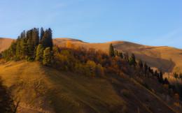 Осень / Осень