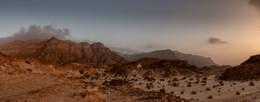 Пустыня просыпается (панорама) / Пустыня Негев, Израиль