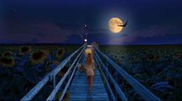 Сон в августовскую ночь в полнолуние... / В основе коллажа собственные фото...
