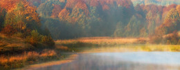 Идиллия на рассвете / Цапля осенним утром на пруду