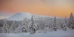 Короткий день полярной ночи / Северная Финляндия.  Заполярье