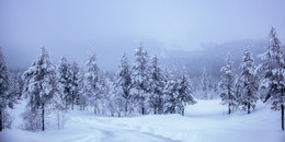 Снежный край / Северная Финляндия. Юллес. Заполярье