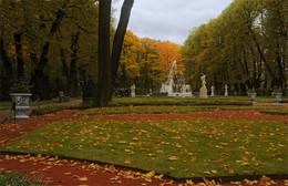 Осенние прогулки по летнему саду / ***