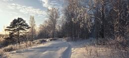 Зима близко. / ***
