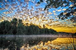 солнце встает... / Начало лета.Раннее утро.Озеро.Облака в виде барашек.Сейчас появится солнце.