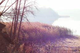 Осеннее утро | Autumn morning / Озеро Лепель, Витебская область