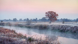 Осенние заморозки / Морозное утро