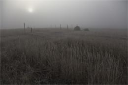 Без названия / туман