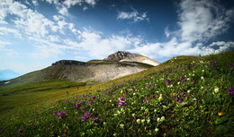Лето в горах / Зап. Кавказ