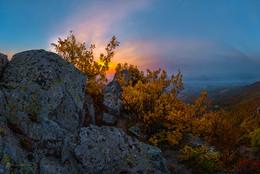 Золотые дубы Бештау / Встреча зари на скальном склоне горы Бештау.  Вот она, красота южной осени! И синева рассвета, и яркость листвы! Для меня, в отличие от мудрости и магии севера страны, на юге, осень, будто свободная от правил, радостная в ощущение жизни. Здесь осень может наслаждаться цветами, разбрасывается оттенками, не экономя, разом вспыхнуть, живя одним днём.  Фотопроект «Открывая Ставрополье». Октябрь, 2018 г.