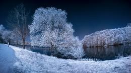 Одиночество - праздник мой. Инфракрасная фотография. / Теплый день в конце апреля. Инфракрасная съемка.