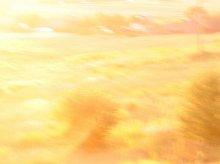 Світанак / Нешта мне падабаюцца апошнім часам такія вось размазаныя вялікай вытрымкай здымкі. Гэтая фатаграфія стаіць у якасьці шпалераў на працоўным стале :)))