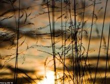 Танец вечернего ветра / ***
