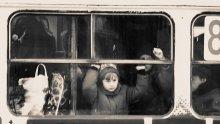 Транспортная.Детская. Випустите на волю. / из жизни трамваев.