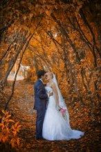 / Ardent autumn... приятного просмотра:)