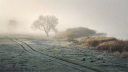 В преддверии зимы / Берег реки туманным ноябрьским утром