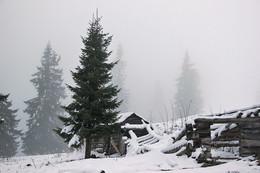 Зимний туман / Полонынка Кукул