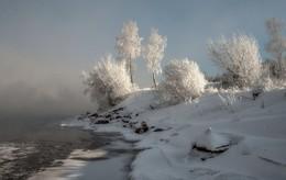 Мороз на Енисее / Изморозь в морозы на деревьях от Енисея.