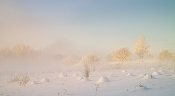 Снежная скатерть / Зимние туманы.
